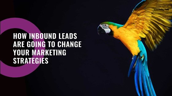 ThinkFlame Inbound leads and Marketing Strategies