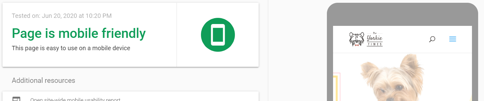 Google Mobile Friendly Test Example